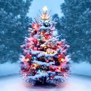 Christmas Boxes Customization